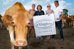 Minghella and Briddlesford Farm
